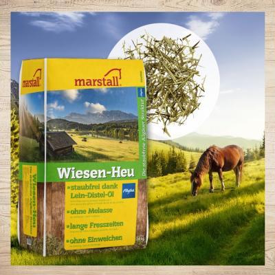New: Wiesen-Heu